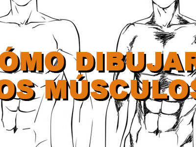¿Cómo dibujar los músculos? (Manga)