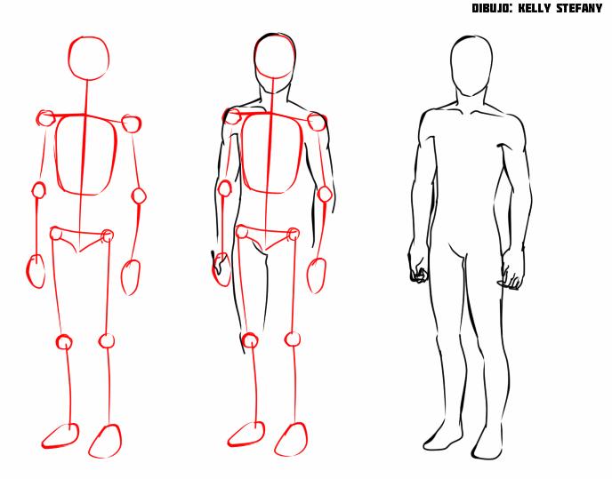 Porcion de cuerpo masculino.