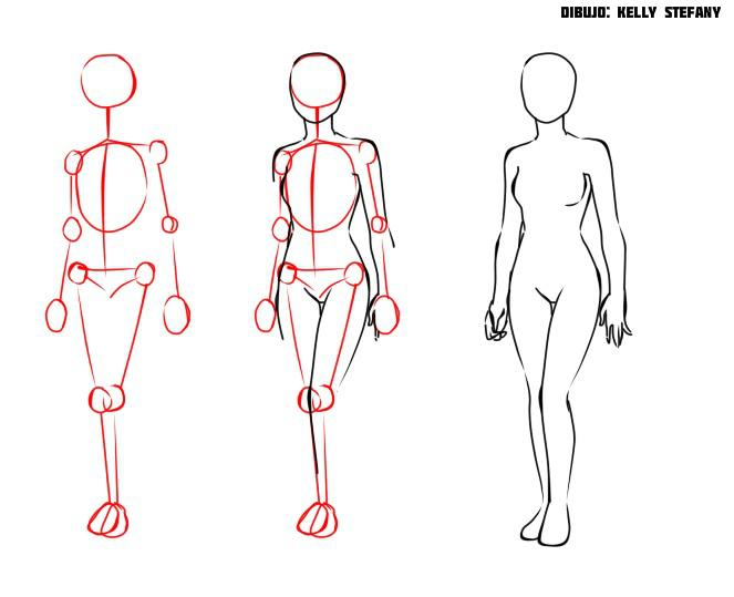 El aumento del pecho con 3 hasta 5 dimensiones